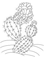 Cactus-flower-coloring-pages-12