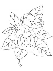 Camellia-flower-coloring-pages-8