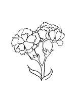 Carnation-coloring-pages-21