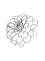 Dahlia-coloring-pages-11