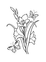 Gladiolus-coloring-pages-16