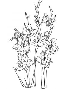Gladiolus-flower-coloring-pages-5