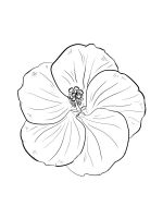 Hibiscus-coloring-pages-14