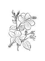 Hibiscus-coloring-pages-16