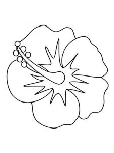 Hibiscus-flower-coloring-pages-8