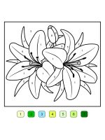 Lilies-coloring-pages-25