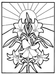 Lilies-flower-coloring-pages-1