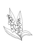 Lily-of-the-valley-coloring-pages-19