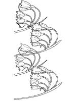Lily-of-the-valley-flower-coloring-pages-13
