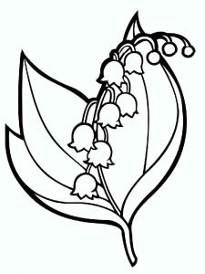 Lily-of-the-valley-flower-coloring-pages-4