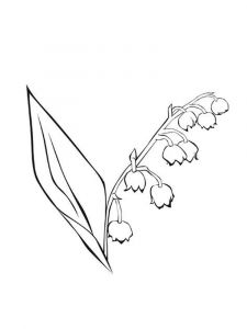 Lily-of-the-valley-flower-coloring-pages-7