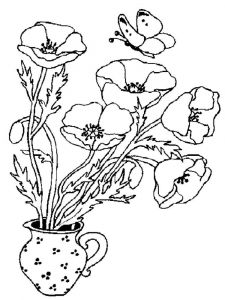 Poppy-flower-coloring-pages-4