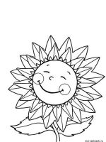 Sunflower-flower-coloring-pages-16