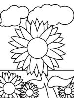 Sunflower-flower-coloring-pages-17