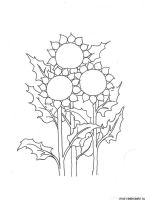 Sunflower-flower-coloring-pages-18