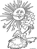 Sunflower-flower-coloring-pages-21