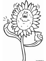 Sunflower-flower-coloring-pages-22