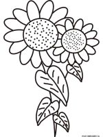 Sunflower-flower-coloring-pages-23