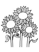 Sunflower-flower-coloring-pages-28