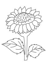 Sunflower-flower-coloring-pages-34