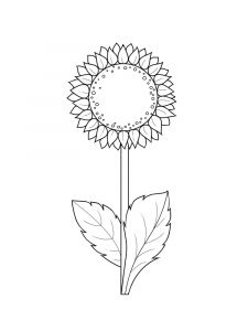 Sunflower-flower-coloring-pages-4