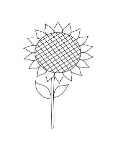 Sunflower-flower-coloring-pages-6