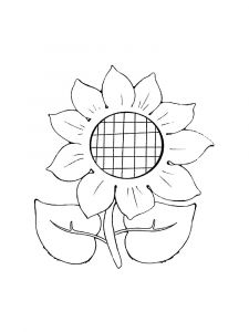 Sunflower-flower-coloring-pages-8