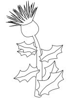 Thistle-flower-coloring-pages-5