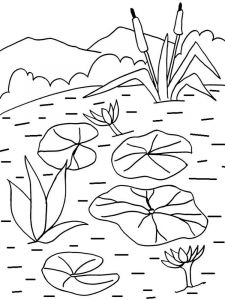 Water-lily-flower-coloring-pages-5