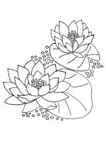 Water-lily-flower-coloring-pages-8