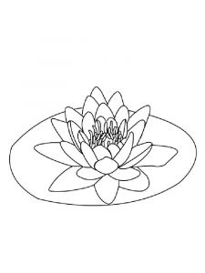 Water-lily-flower-coloring-pages-9