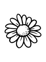 chamomile-coloring-pages-22