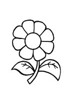chamomile-coloring-pages-27