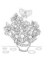 chamomile-coloring-pages-30