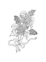 lilac-coloring-pages-12