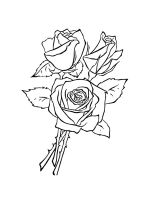 rose-coloring-pages-36