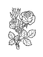 rose-coloring-pages-37
