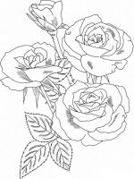 rose-flower-coloring-pages-1