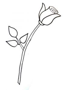 rose-flower-coloring-pages-2
