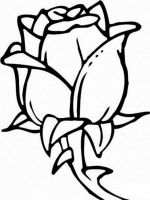 rose-flower-coloring-pages-3