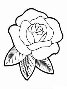 rose-flower-coloring-pages-4