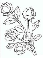rose-flower-coloring-pages-9