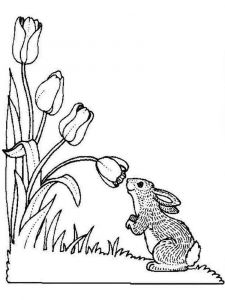 tulip-flower-coloring-pages-17