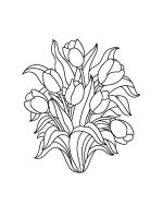 tulips-coloring-pages-18