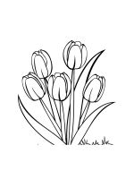 tulips-coloring-pages-20