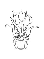 tulips-coloring-pages-23