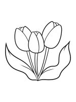 tulips-coloring-pages-36