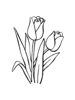 tulips-coloring-pages-39