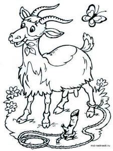 coloring-pages-for-5-6-7-year-old-girls-10