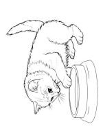 cute-cats-coloring-pages-14